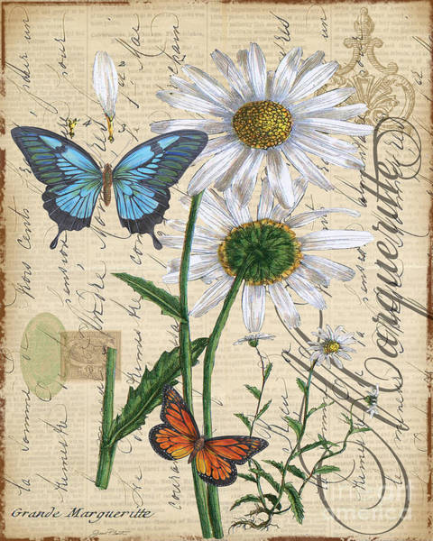 Insect Mixed Media - French Botanical-marqueritte by Jean Plout