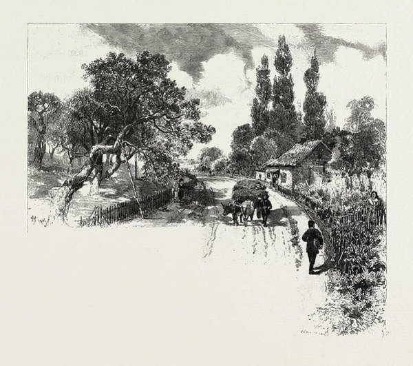 Old Style Drawing - French Canadian Life, An Old Orchard, Canada by Canadian School