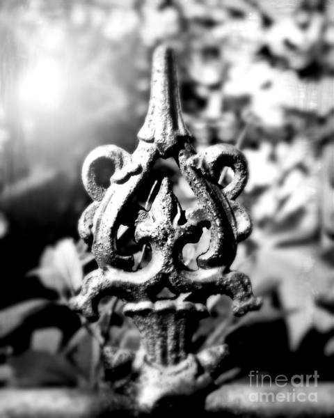 Fleur De Lis Photograph - French Iron by Perry Webster