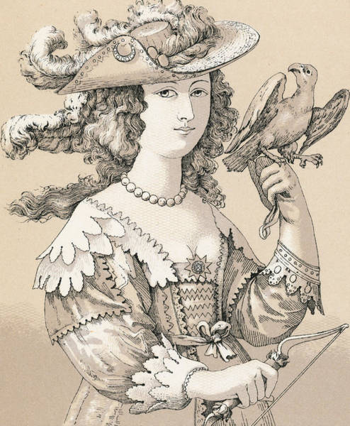 Parrot Drawing - French Seventeenth Century Costume by French School