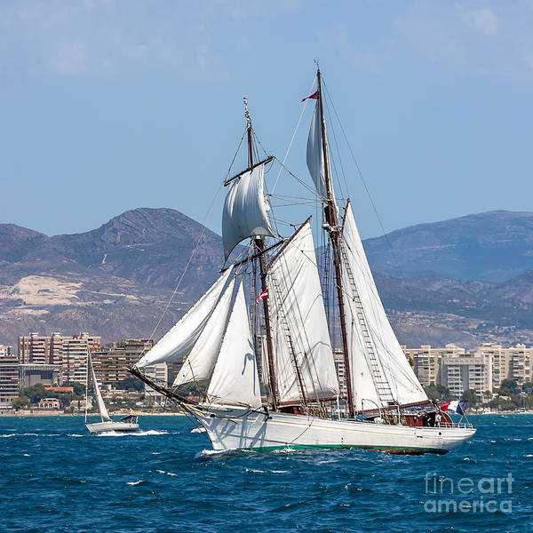 Photograph - French Shooner Alicante by Pablo Avanzini