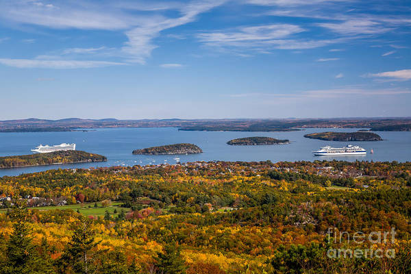 Photograph - Frenchman Bay Cruiseboats by Susan Cole Kelly