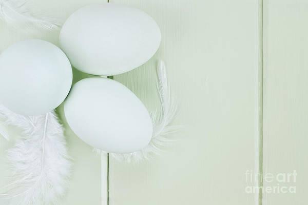 Unbroken Wall Art - Photograph - Fresh Ameraucana Eggs And Feathers by Stephanie Frey