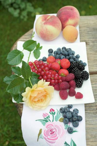 Wall Art - Photograph - Fresh Berries On Plate, Peaches And Apricot Beside It by Foodcollection