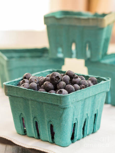 Blue Berry Photograph - Fresh Blueberries by Edward Fielding