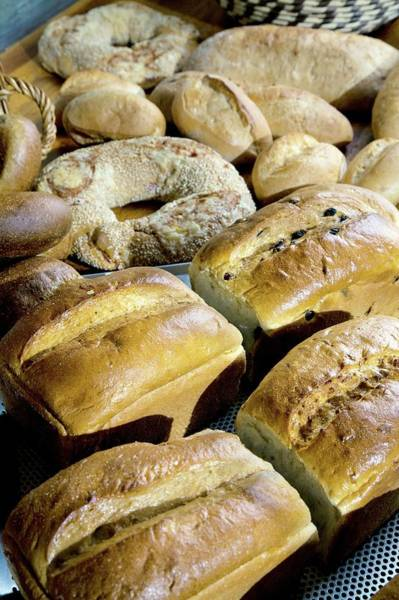 German Food Photograph - Fresh Bread by Peter Menzel/science Photo Library