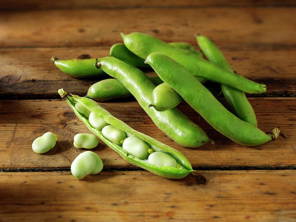 Healthy Eating Photograph - Fresh Broad Beans In Their Pods by Paul Williams - Funkystock