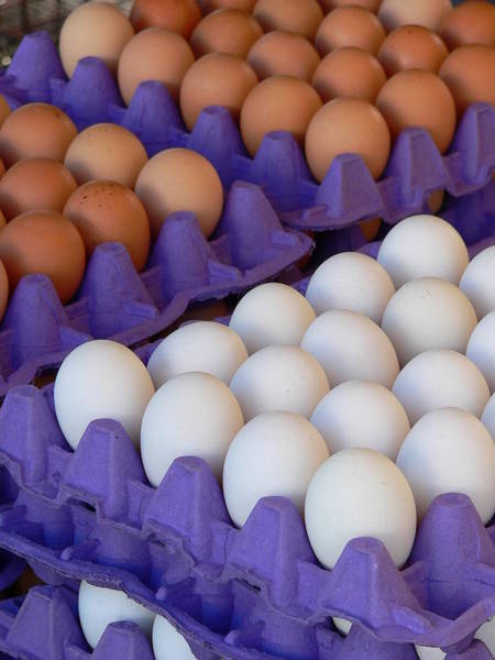 Photograph - Fresh Brown And White Eggs by Jeff Lowe