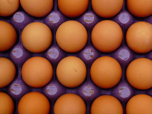 Photograph - Fresh Brown Eggs by Jeff Lowe