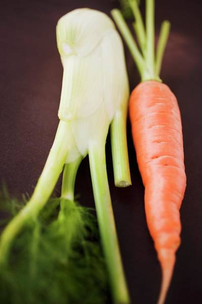 Vegies Photograph - Fresh Carrot And Florence Fennel Bulb by Foodcollection