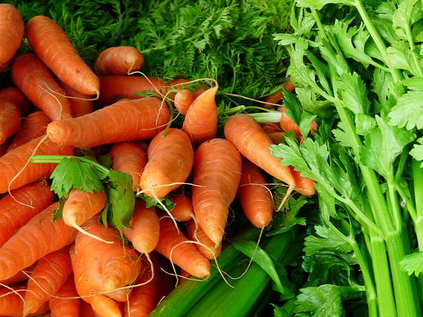Photograph - Fresh Carrots And Celery by Jeff Lowe