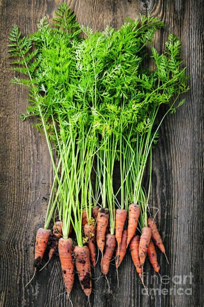 Leafy Greens Photograph - Fresh Carrots  by Elena Elisseeva