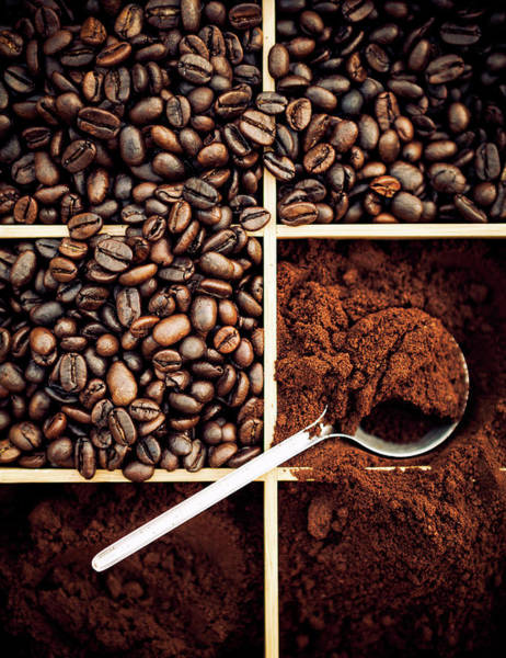 Ground Photograph - Fresh Coffee by Chang