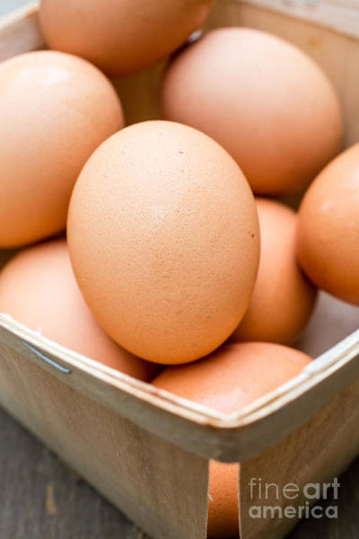 Wall Art - Photograph - Fresh Eggs by Edward Fielding