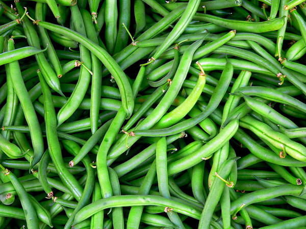 Photograph - Fresh Green Beans by Jeff Lowe