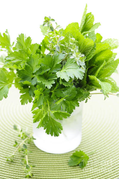 Parsley Photograph - Fresh Herbs In A Glass by Elena Elisseeva