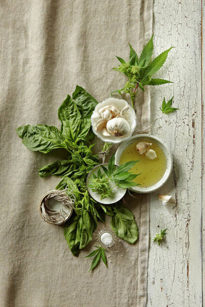 Olive Oil Photograph - Fresh Ingredients With Marijuana by Lew Robertson