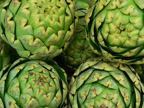 Photograph - Fresh Large Artichokes by Jeff Lowe