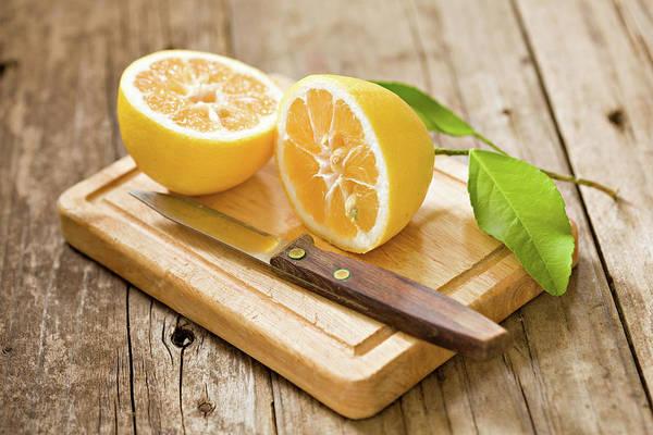 Handle Photograph - Fresh Lemon by Debbismirnoff
