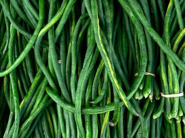 Photograph - Fresh Long Green Beans by Jeff Lowe