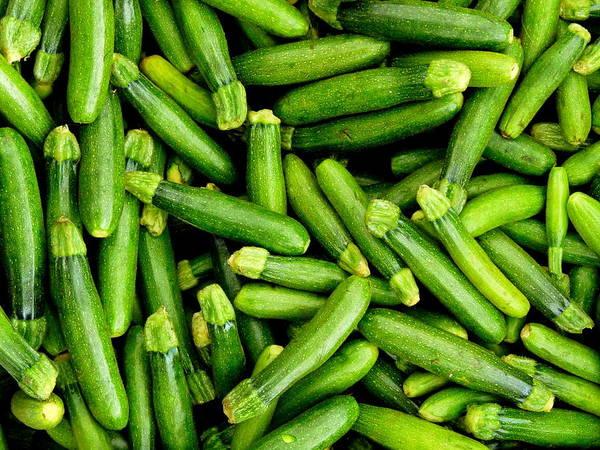 Photograph - Fresh Miniature Zucchini  by Jeff Lowe
