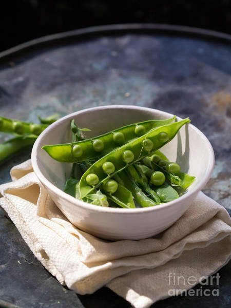 Green Vegetable Photograph - Fresh Peapods by Edward Fielding