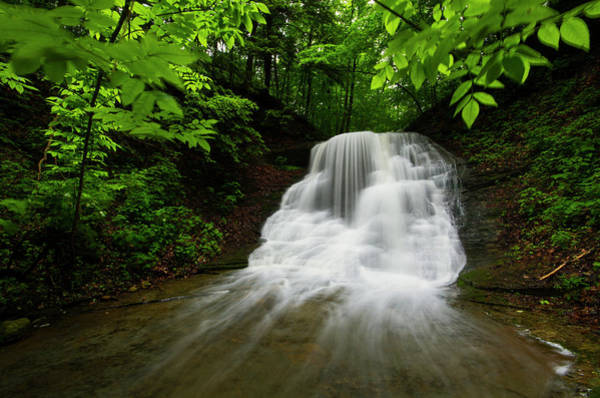Branch Photograph - Fresh Pristine Springtime Waterfall by Matt Champlin