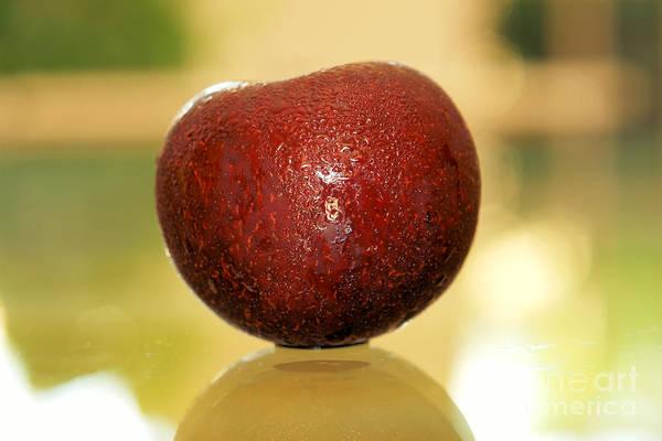 Manzana Wall Art - Photograph - Fresh Red Apple  by Javier Correa