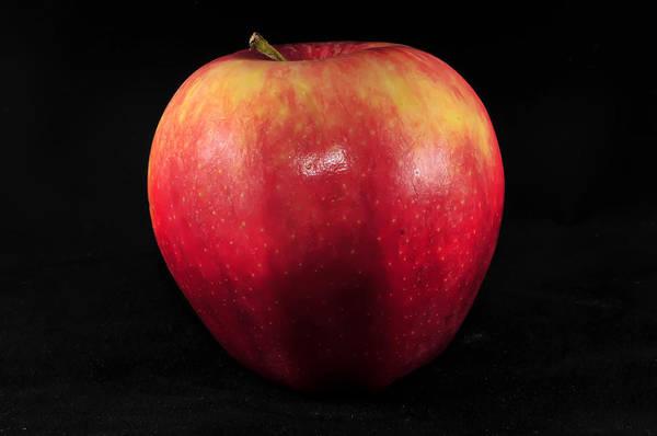 Photograph - Fresh Red Apple On Black Background by Alex Grichenko