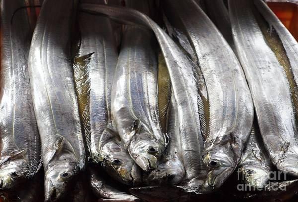Fresh Ribbonfish For Sale In Taiwan Art Print