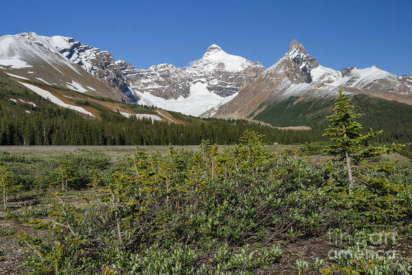 Photograph - Fresh Snow In Mid-july by Charles Kozierok