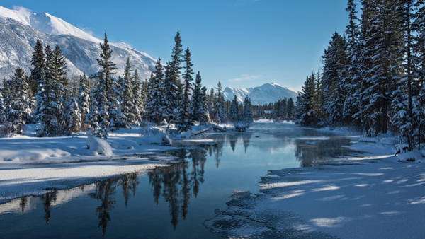 Canmore Wall Art - Photograph - Fresh Snow On Mountains And Trees by Panoramic Images