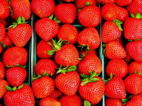 Photograph - Fresh Strawberries In Tray by Jeff Lowe