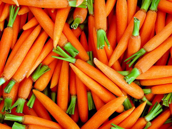 Photograph - Fresh Trimmed And Peeled Carrots Closeup by Jeff Lowe