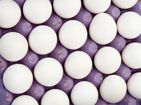 Photograph - Fresh White Eggs by Jeff Lowe