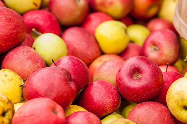 Photograph - Freshly Harvested Colorful Crimson Crisp Apples On Display At Th by Alex Grichenko