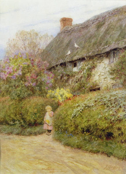 Posies Photograph - Freshwater Cottage Wc On Paper by Helen Allingham