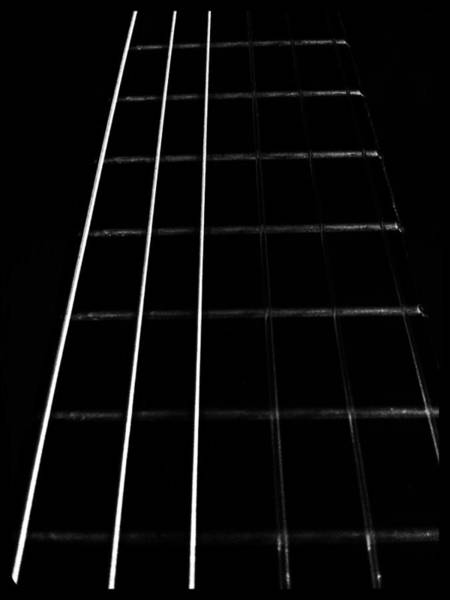 Photograph - Fretboard by Abbie Shores