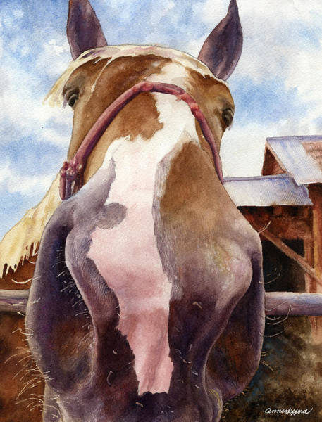 Wall Art - Painting - Friendly Horse by Anne Gifford