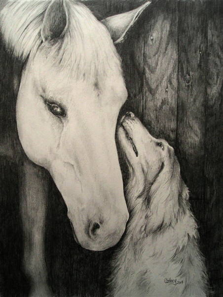 Mutt Drawing - Friends by Catherine Howley