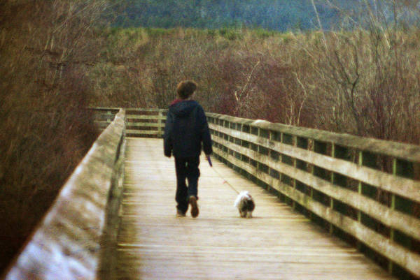 Photograph - Friends by Marilyn Wilson