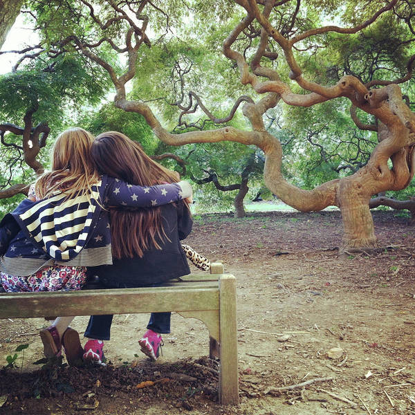 Casual Photograph - Friends Under Tree Canopy by Cyndi Monaghan
