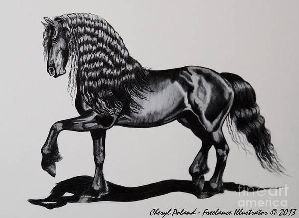Friesian Drawing - Friesian Mare by Cheryl Poland