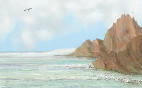 Frigate Bird Seascape Art Print