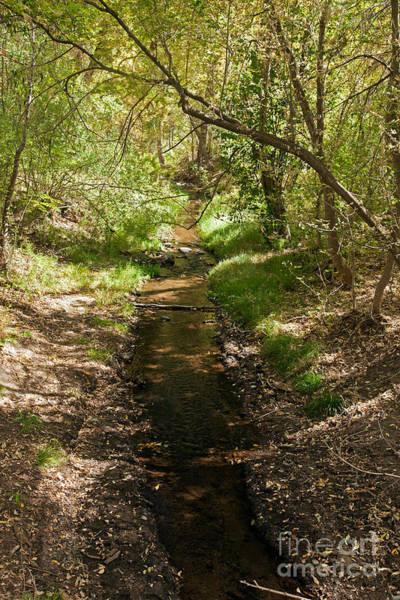 Frijole Creek Bandelier National Monument Art Print