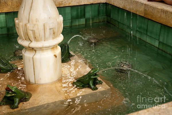 Photograph - Frog Fountain by Brenda Kean