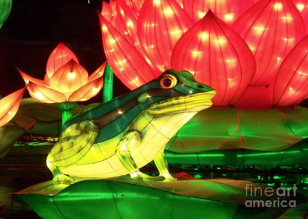 Photograph - Frog Lantern by Cheryl McClure