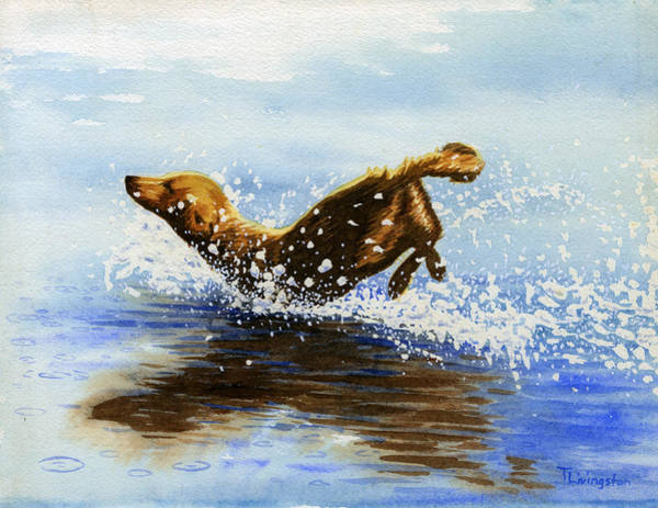Golden Retriever Drawing - Frolicking Dog by Timothy Livingston