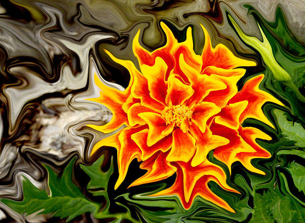 Liquify Photograph - From Alien Seed by Paul W Faust -  Impressions of Light