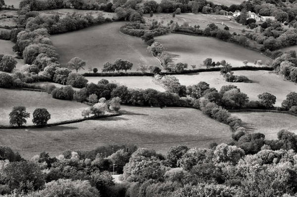 Photograph - From Dumpdon Hill by Pete Hemington
